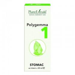 Polygemma 01 PlantExtrakt -...